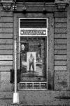 Leia mais:Canela Foto Workshop on the Road